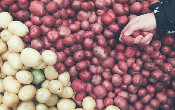它能帮助你减肥吗? 目前还没有专门针对土豆减肥的研究,但它可能会帮助你减肥,因为它的热量非常低。 研究表明,限制卡路里摄入的饮食很可能会导致体重下降——只要你能坚持下去。 尽管每天2-5磅(0.9-2.3千克)的土豆看起来很多,但它只相当于530-1300卡路里,远远低于成年人的平均每日摄入量。 有趣的是,土豆含有复合蛋白酶抑制剂2,可以通过减缓消化来帮助减少饥饿感。 一项研究发现,与未经土豆处理的小鼠相比,吃这种处理土豆化合物的小鼠吃的食物明显减少,体重减轻。然而,这些影响还没